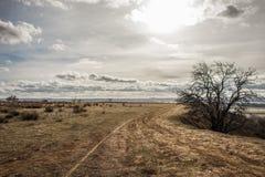 漠土道路风景和多云天空 免版税库存图片