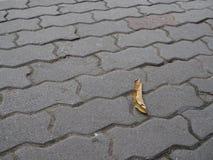 漩涡样式水泥砖与下落的叶子的砖地 图库摄影