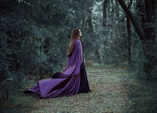 漫步在森林的一个长的黑暗的斗篷的邪恶的巫婆 库存照片