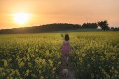 漫步在油菜籽领域的一条小径的妇女 库存图片