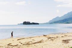 漫步的海滩 库存照片