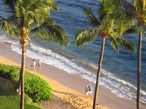 漫步的海滩 免版税图库摄影