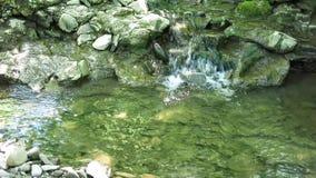 漫过岩石的小小河 浇灌漫过岩石在一条干净的小河 影视素材
