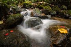 漫过岩石的水在Little Falls 免版税图库摄影
