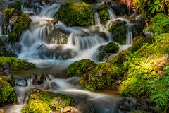 漫过生苔岩石的华盛顿州河 免版税图库摄影
