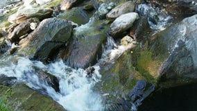 漫过石头的清楚的水 股票视频