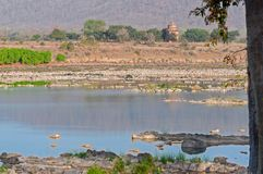 潘纳河和rivebed在潘纳国家公园,中央邦,印度 免版税图库摄影