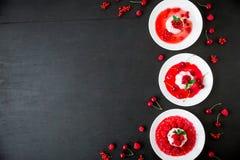 潘纳陶砖用在一块板材的果子糖浆在一个黑暗的背景和鲜美莓果 平的位置 顶视图 传统意大利点心 库存照片