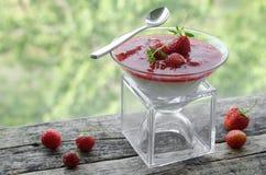 潘纳陶砖用草莓调味汁 免版税库存图片