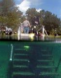 潜水员输入县司法行政官春天漩涡 库存照片