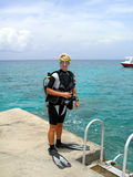 潜水的岸 库存图片