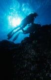 潜水礁石 库存照片