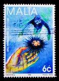 潜水者和海胆,海洋serie的国际年,大约1998年 库存照片