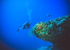 潜水者的水下的图象在珊瑚鱼附近的 免版税库存图片