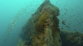 潜水者闭合值凹下去的船` s表面上 影视素材