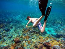 潜航一个年轻的男孩的水下的射击 图库摄影