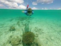 潜航在与小热带鱼的健康珊瑚上的妇女 库存图片