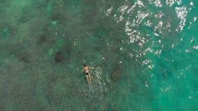 潜航在公海观看的珊瑚和异乎寻常的鱼的年轻女人的空中射击 影视素材