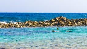 潜航在婴孩海滩,阿鲁巴 免版税图库摄影