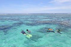潜航在拉罗通加库克群岛的游人 库存图片