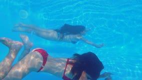 潜航在水池、苗条美丽的女朋友有美好的身体倾没的和游泳水下在清楚的蓝色游泳池边 股票录像