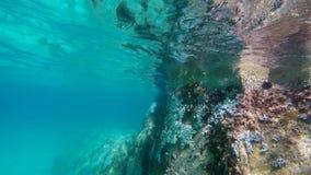 潜航在水面下在蓝色海在希腊 股票录像
