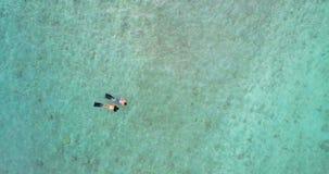 潜航在海4k的夫妇 股票视频