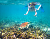 潜航在热带海的孩子在乌龟旁边 免版税库存照片