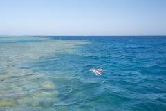 潜航在热带礁石的夫妇 免版税库存照片