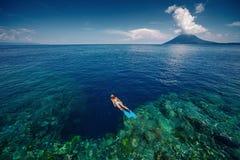 潜航在礁石墙壁的夫人 库存照片