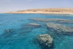 潜航在洪加达(埃及)附近的红海 库存照片
