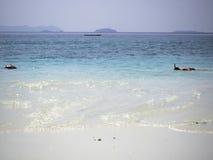 潜航在绿松石热带海的人由白色含沙b 库存图片