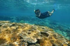 潜航在水面下在热带礁石的人 库存图片