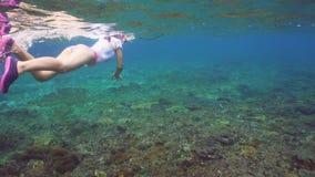 潜航的女孩在水面下 股票视频