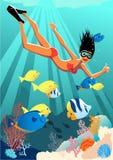 潜航的女孩 库存图片