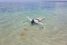 潜航的妇女,群岛Bocas del托罗,巴拿马 免版税图库摄影