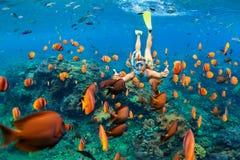 潜航的面具下潜的女孩在水面下与珊瑚礁钓鱼 免版税库存图片