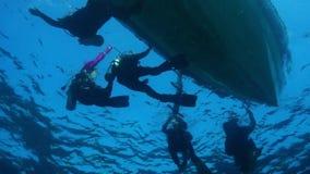 潜水员 股票视频