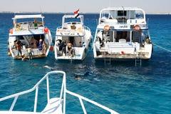 潜水和潜航在珊瑚礁 免版税库存图片