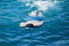 潜水在海 免版税图库摄影