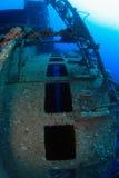 潜水在红海 库存照片