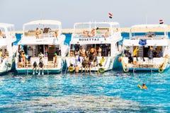 潜水埃及 红海的纯净的水 图库摄影