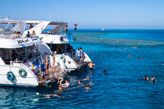 潜水的红色水肺海运 假日在埃及 免版税库存照片