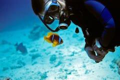 潜水者和Anemonefish 库存照片