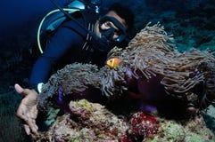 潜水者和clownfish 免版税库存照片