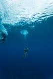 潜水者在加勒比海贝耳下降入蓝色孔 库存图片