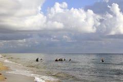 潜水者在离海岸的附近 库存图片