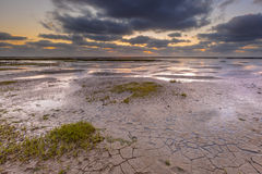 潮汐沼泽泥滩 库存照片