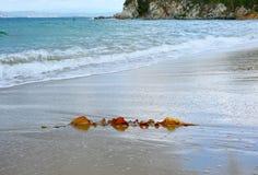 潮汐的打扰 在海岸视图之上 免版税图库摄影