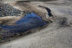 潮汐的池 免版税库存照片